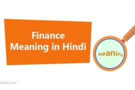 Finance meaning in hindi: फाइनेंस का अर्थ हिंदी में